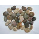 Pond Stones - Assorted Colours